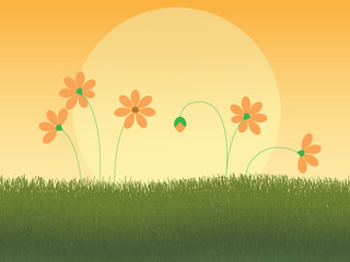 Five Orange Flowers in the Grass and the Setting Sun