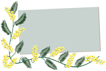 Mimosa border - Greeting card
