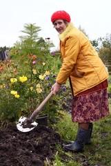 The woman processes soil on a kitchen garden