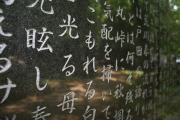 Kanji Textured Background in Tokyo