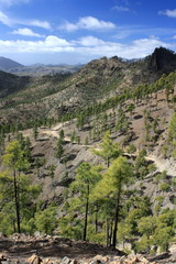footpath on volcanic slopes on Gran Canaria