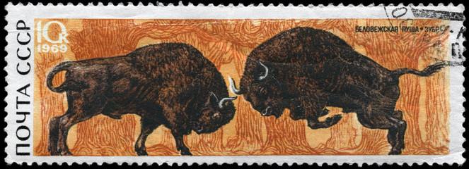 USSR - CIRCA 1969 Bison