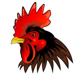 Rooster head - vector