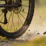 Mountainbiker auf einem Feldweg - 30474725