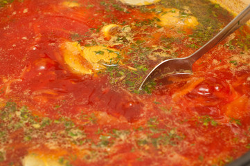closeup of russian traditional borscht