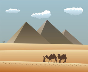 vector illustration of camels and bedouin in desert