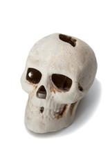 skull in half fas