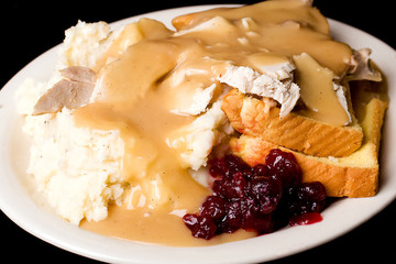 Turkey, Cranberry, Gravy and Mashed Potatoes