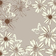 vector floral   background with blooming chamomiles