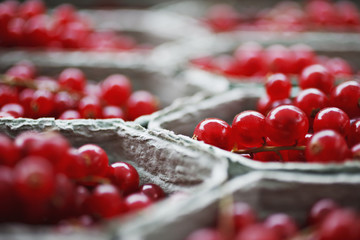Close up of red currant in baskets