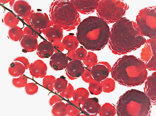 Close up of red currants and raspberries