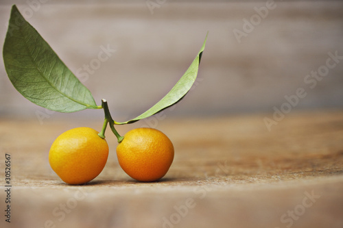 Close up of kumquats