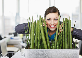 Smiling businesswoman peering from behind plant in office