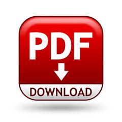 Icon PDF Download