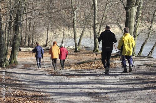 Gruppe beim Nordic Walking im Wald