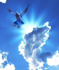 volo spirituale