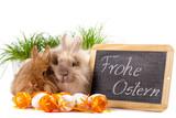 Kaninchen mit Ostereiern und Tafel