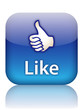 """LIKE"" Web Button (vote thumbs up share internet social network)"