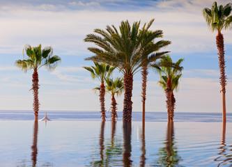 Infinity edge swimming pool at luxury resort, Mexico