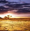 Fototapeten,wüste,trocken,afrika,dunkel