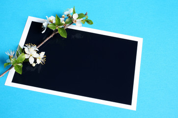 biglietto auguri con ramo fiorito