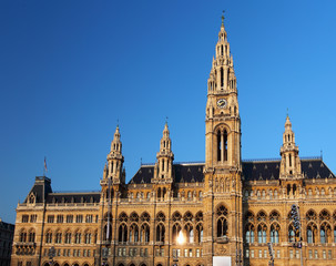Vienna's City Hall