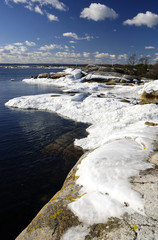 Beautiful spring shore vertical landscape with ice poles
