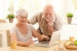 Portrait of happy old couple shopping online