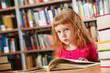 Library goer