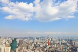 東京のビジネス街展望