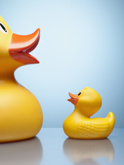 Large and small rubber ducks