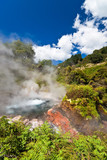 New Zealand geothermal pool poster