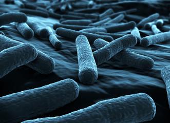 E coli Bacteria close up