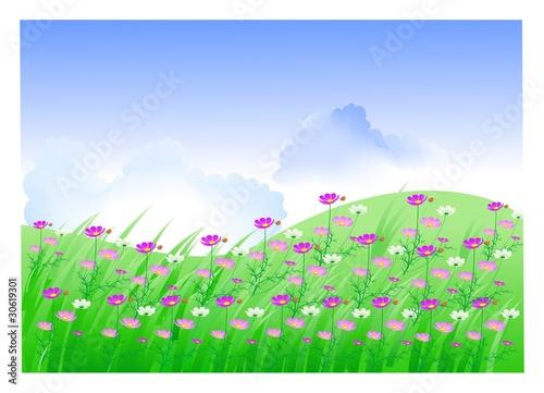 Poster Pony пейзаж