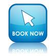 """BOOK NOW"" Web Button (order online e-booking click here cursor)"