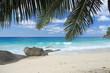 paysage de rêve sous les cocotiers : les Seychelles