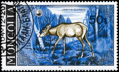 MONGOLIA - CIRCA 1984 She-deer