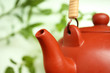 Teapot with leaves