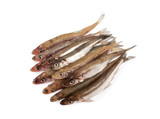 smelts isolated on white background