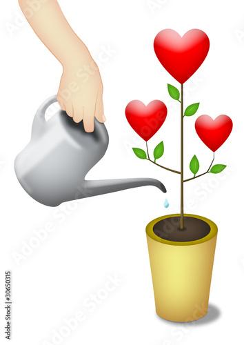Nurture Love