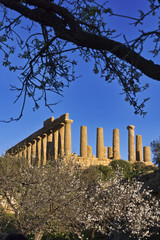 Italy, Sicily, Agrigento, Juno Temple (480-420 b.C.)