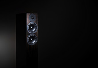 High End loudspeaker in spotlight