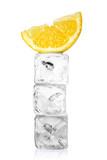 Zitrone im Eisblock