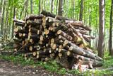Woodpile poster