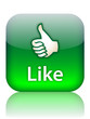 """LIKE"" Web Button (vote thumbs up share positive satisfaction)"