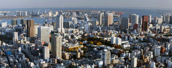 Tokio Bay