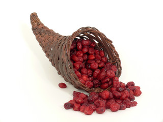 getrocknete Cranberries