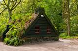Fototapeta old house made of peat