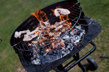 grigliata di salsicce di maiale sul prato