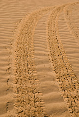 Tire tracks in the desert